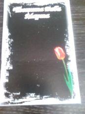 Картонче в черно-лале-пакет от 100 бр.